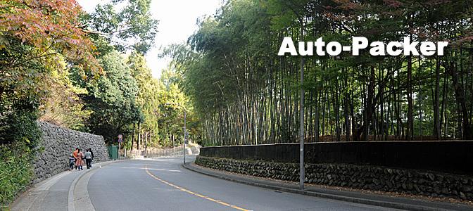 京都 きぬかけの路