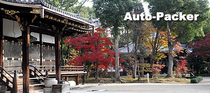 京都らしい紅葉シーンが撮れる、古刹「仁和寺」