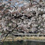 嵐山の車中泊スポット 京都市営嵐山観光駐車場