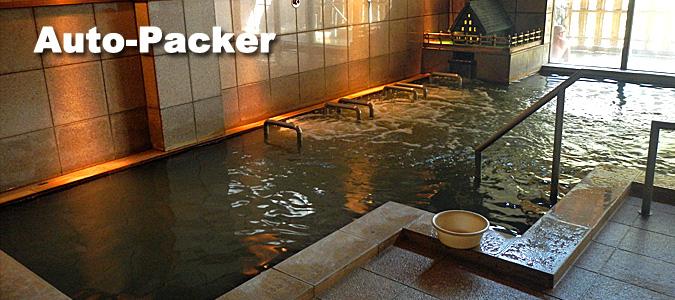 世界遺産に湧く温泉 白川郷の湯