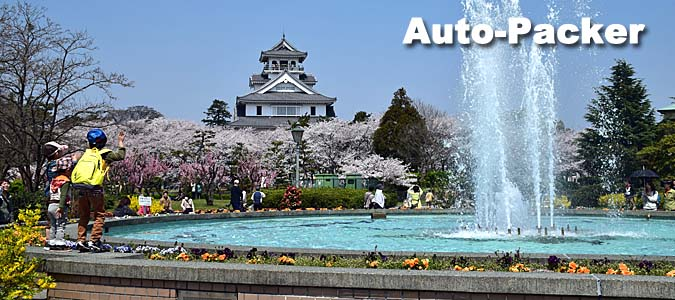 車中泊ができる琵琶湖の桜の名所 長浜城
