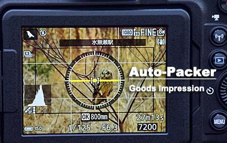 クールピックスP900 鳥モード
