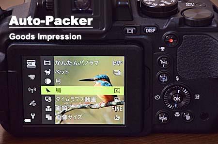 鳥モード クールピックス