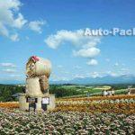 8月がお勧め! 美瑛パノラマロードの絶景フラワースポット 「四季彩の丘」