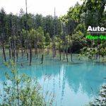 青い池の「隠れフォトスポット」