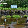 道の駅ニセコビュープラザの近くで、無料の美味しい天然水が汲める「羊蹄山の湧き水」
