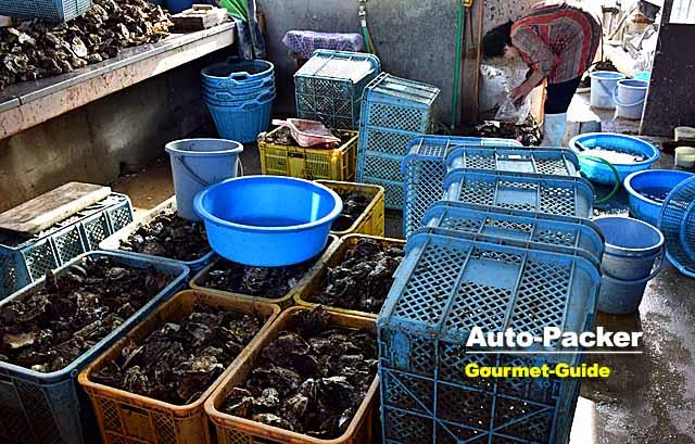 牡蠣の直売所
