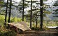 上高地の極上キャンプサイト 森のリゾート小梨(小梨平キャンプ場)