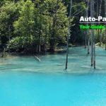 美瑛の白金地区にある「青い池」。