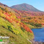 9月下旬に紅葉のピークを迎える大雪高原にて。