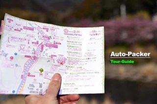 河津桜まつりマップ