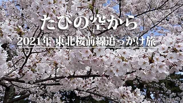 東北桜前線