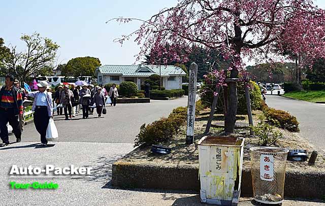 豊公園 駐車場