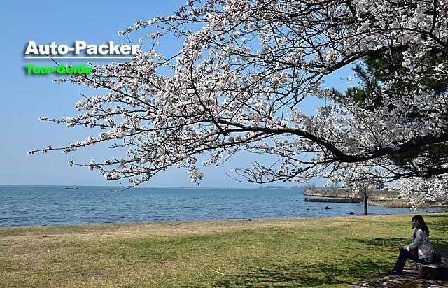 長浜城 琵琶湖湖岸