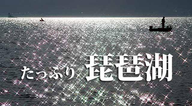 琵琶湖踏襲