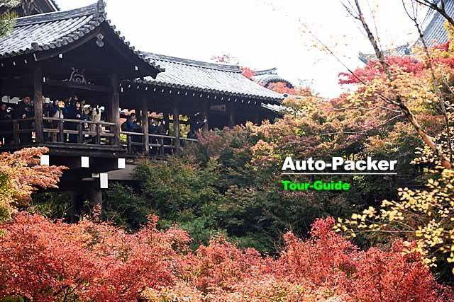 鎌倉時代創建の歴史スポット