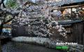 車中泊で京都を攻略するための基本