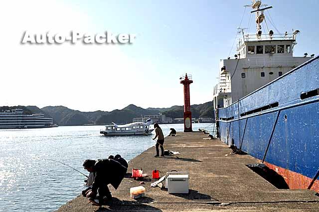 勝浦漁港 釣り