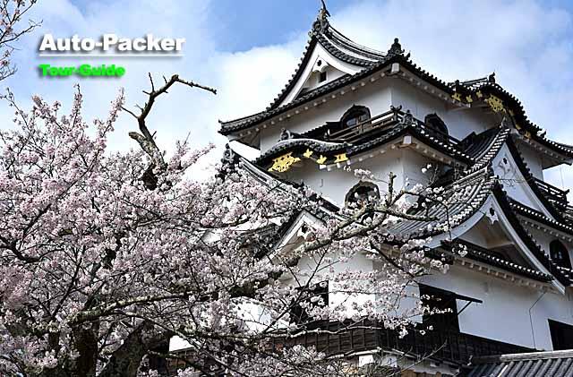 現存十二天守と日本100名城